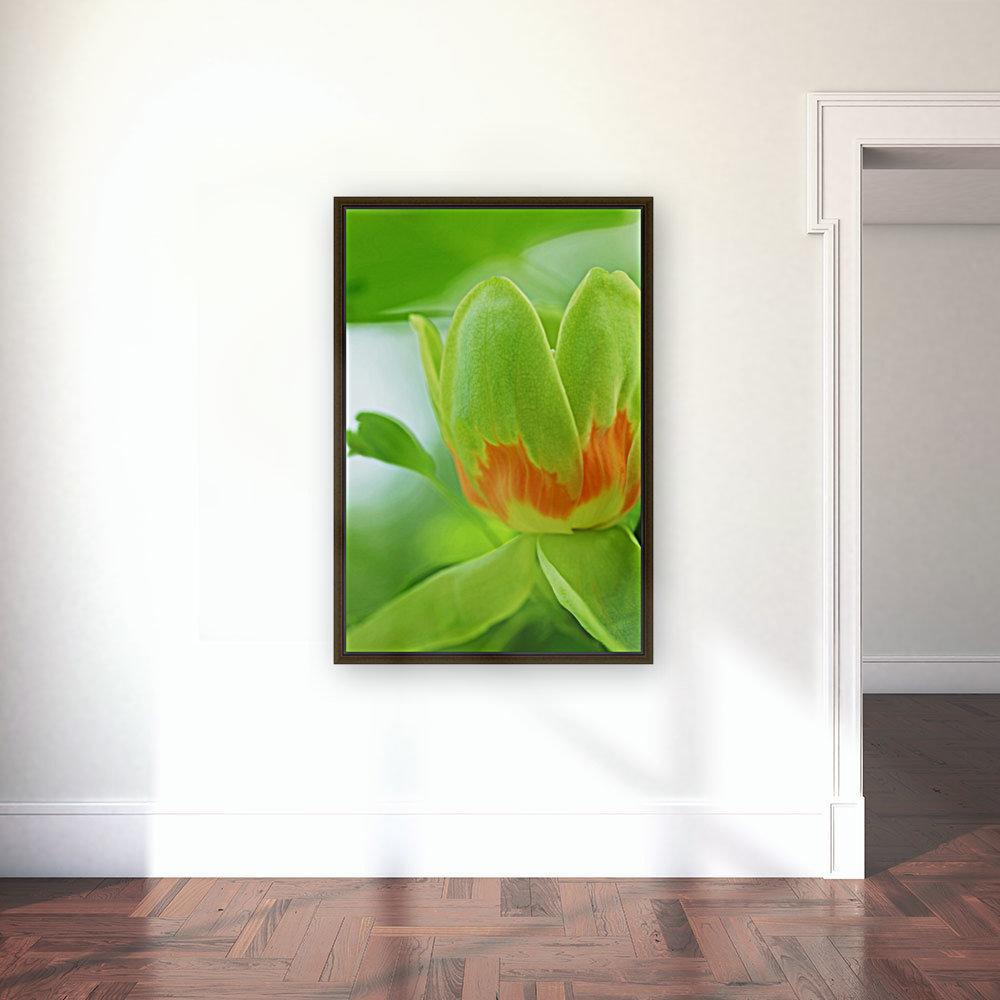Yellow Poplar Flower  Art