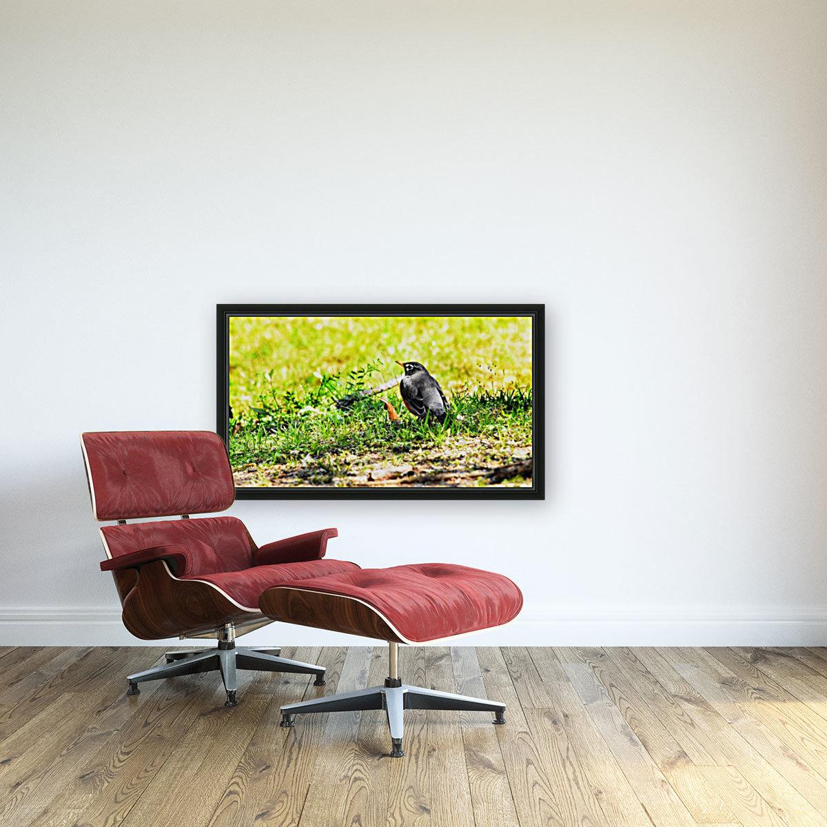 Vivid Robin  Art