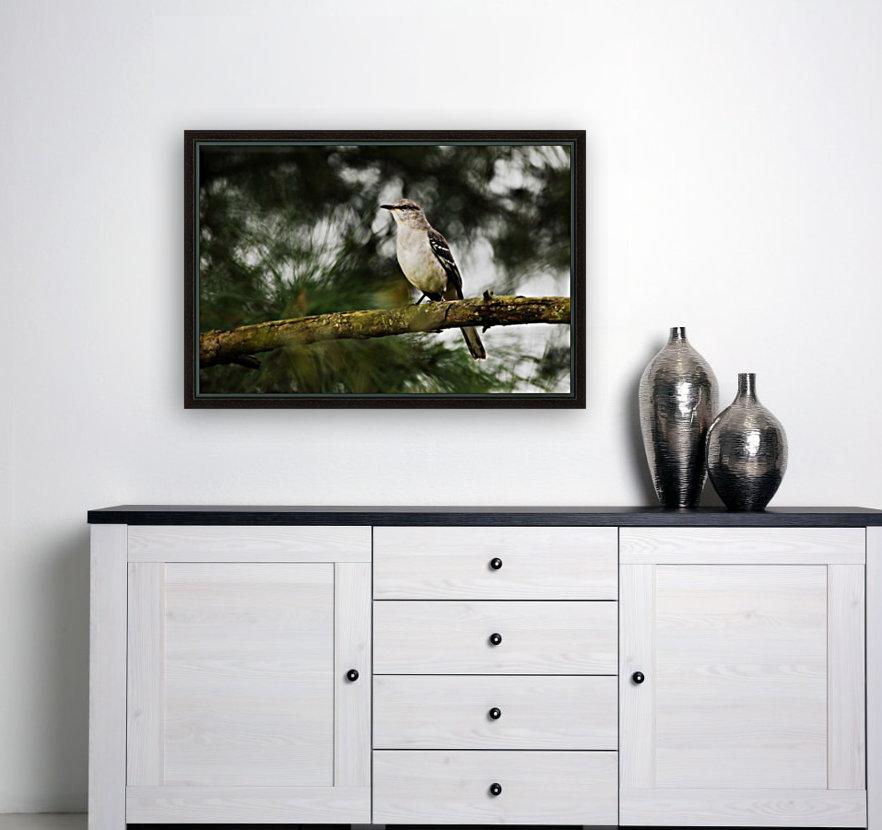 Mockingbird  Art