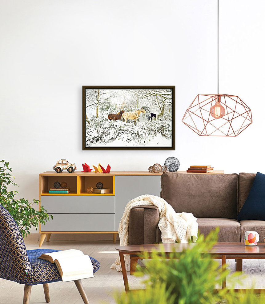 SNOWY APPALOOSA with Floating Frame