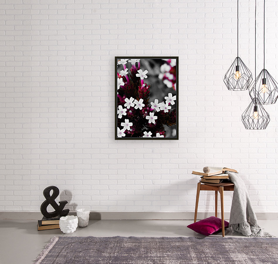 White bloom  Art