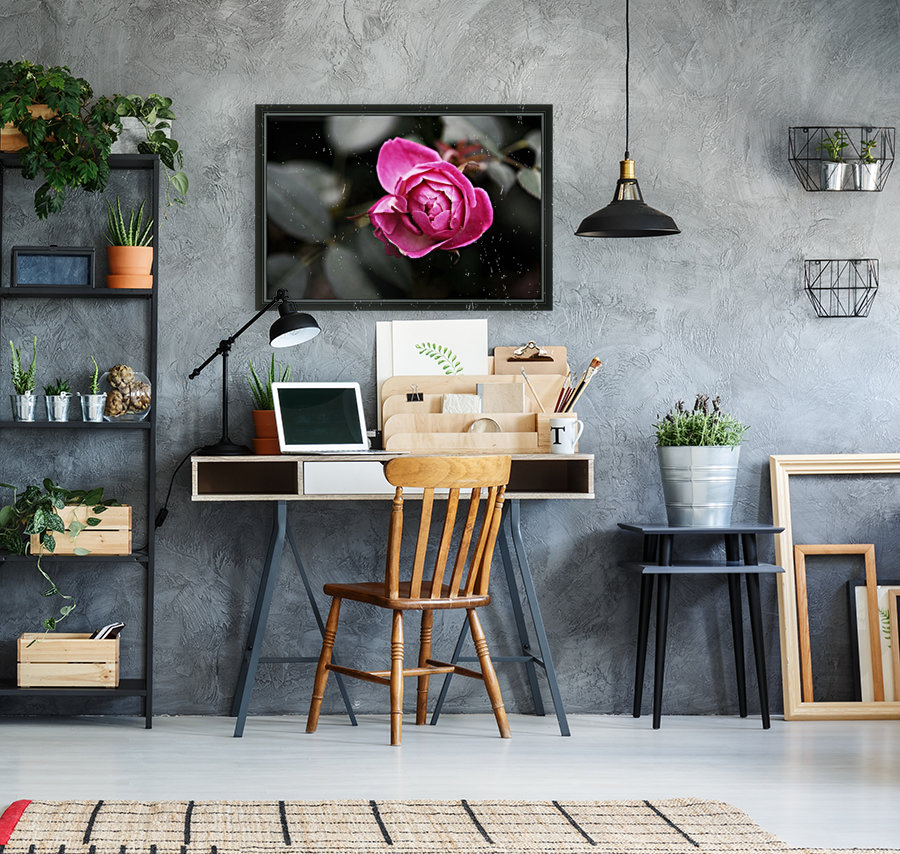 Single Rose  Art