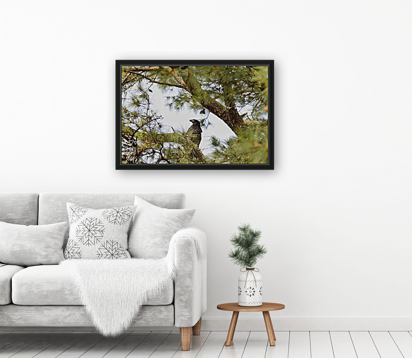 Baby Eagle with Floating Frame