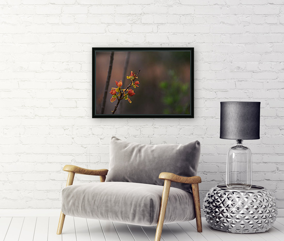 orange blossoms  Art