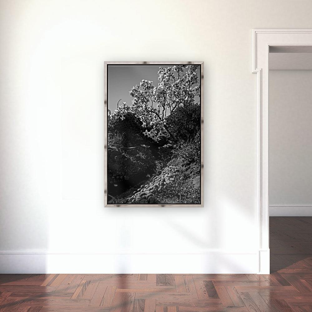 20190316 DSC_0136 2  Art