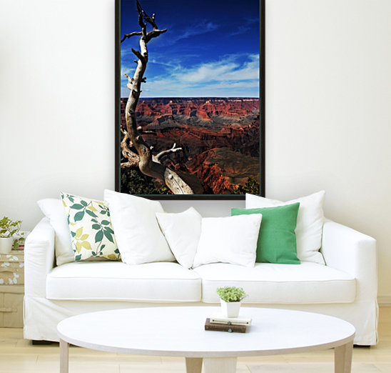 Grand Canyon framed by tree  Art
