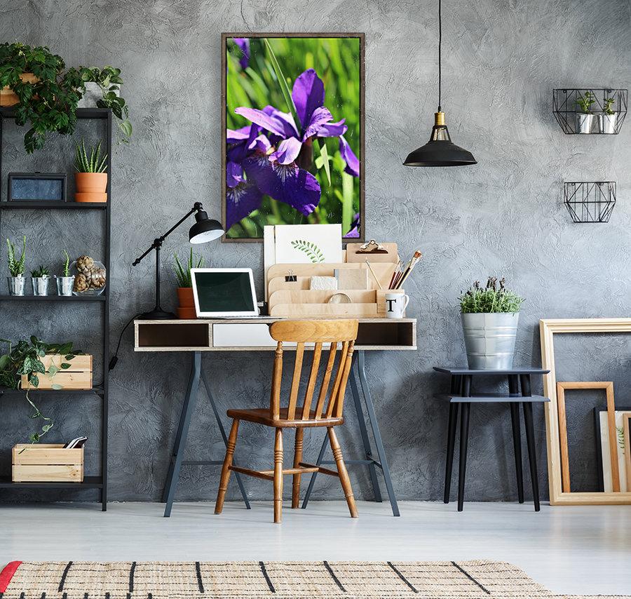 Purple Iris  Art