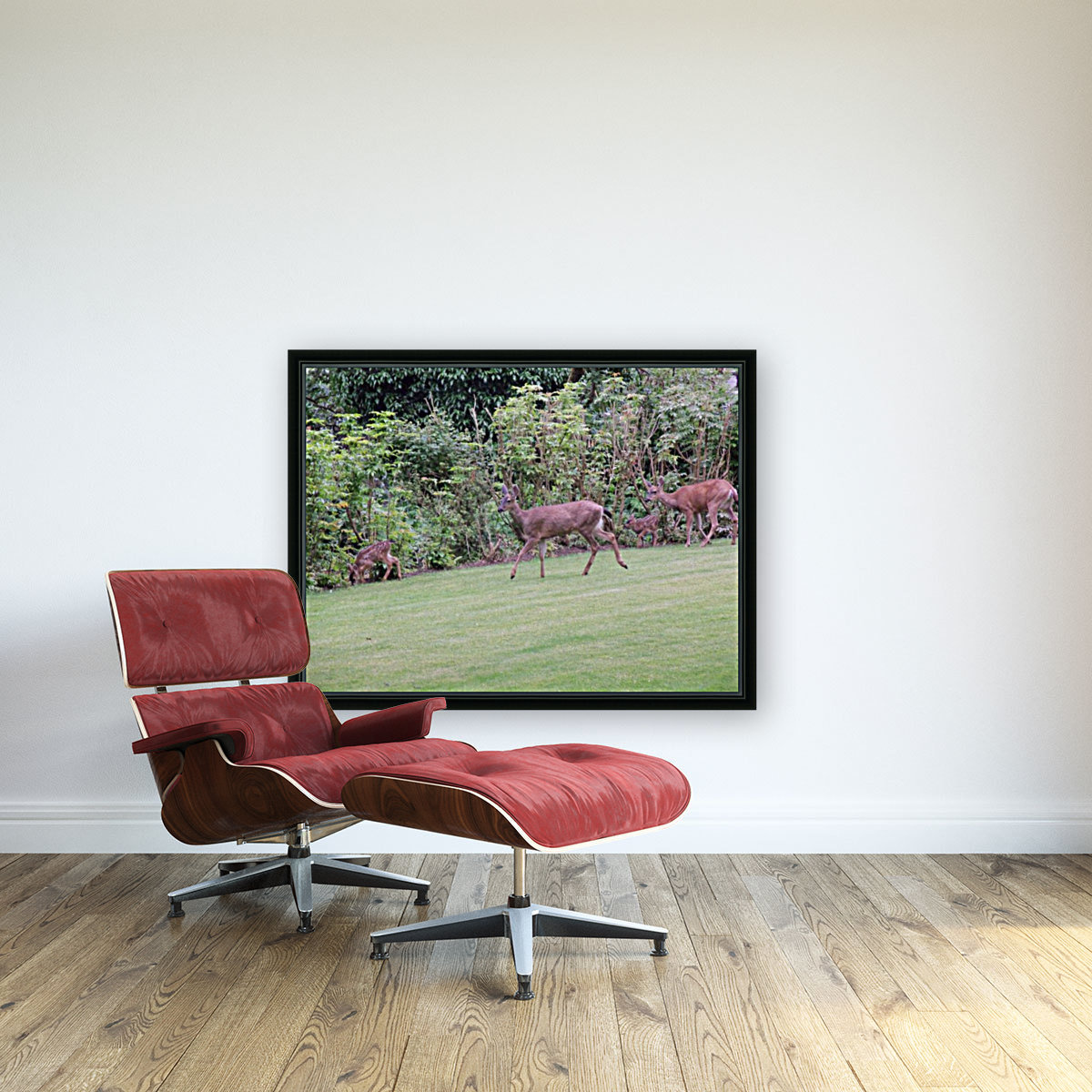 Deer with Floating Frame