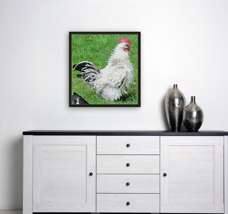 Chicken with Floating Frame