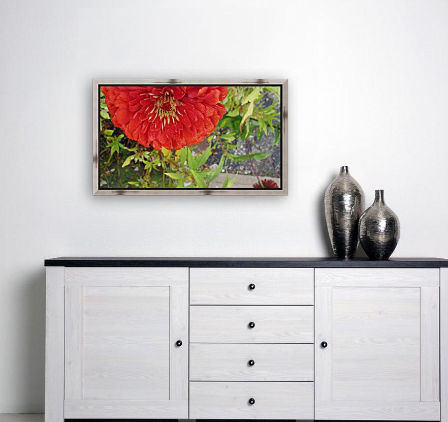 Flower (7)  Art