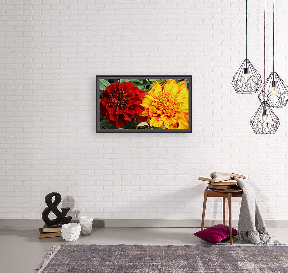 Red and Yellow Marigolds 062718  Art