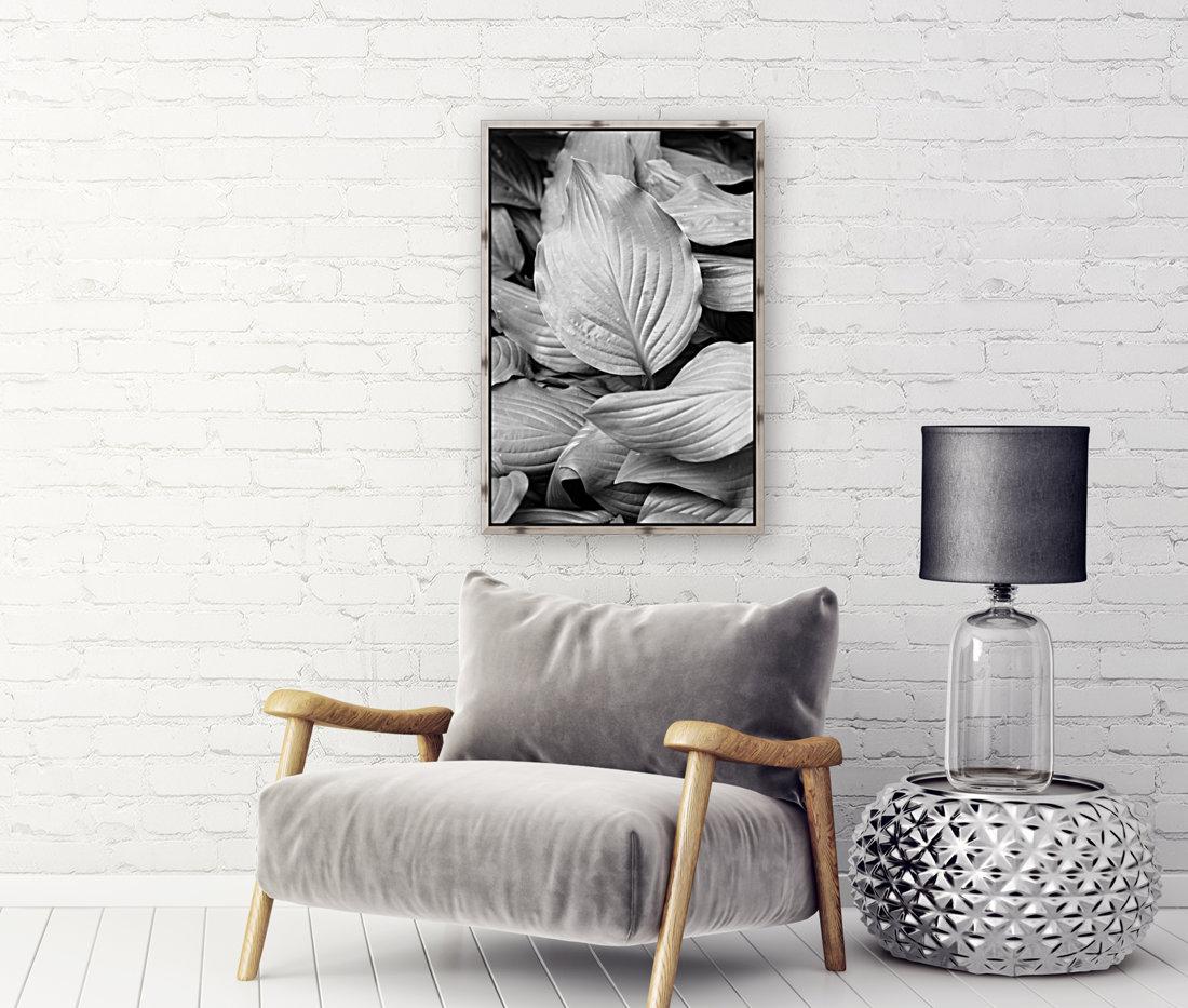 Softly Curving Foliage BW 062618  Art