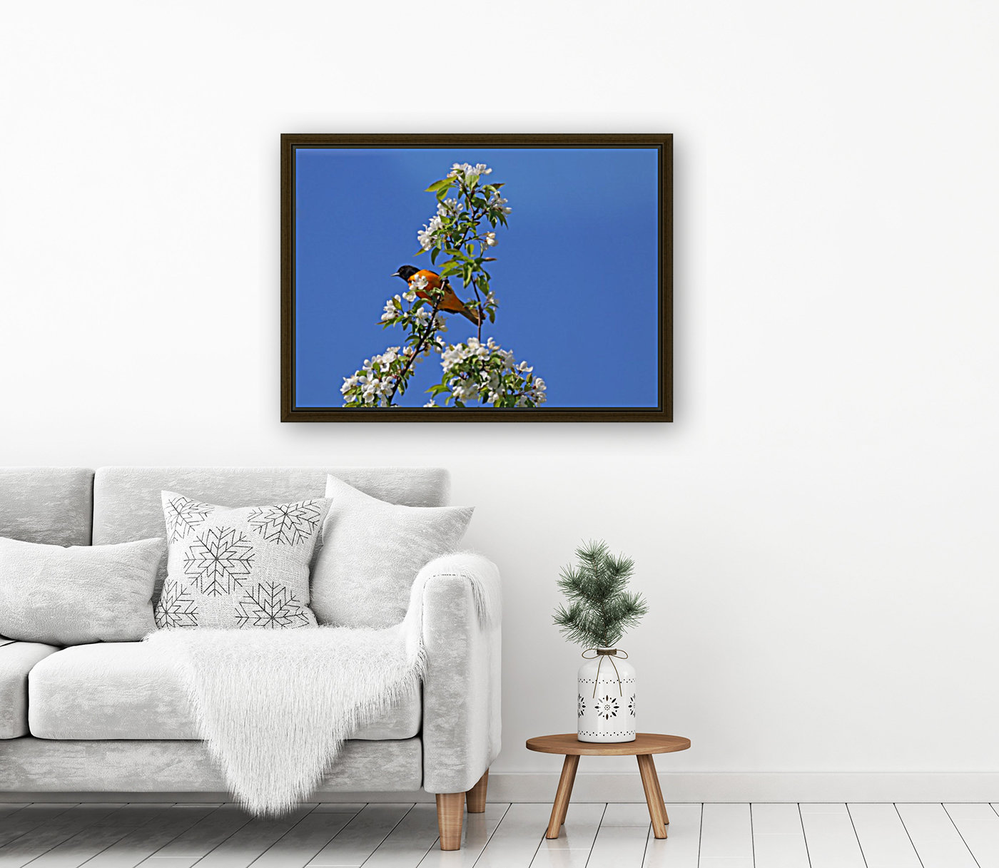 Oriole And White Blossoms  Art