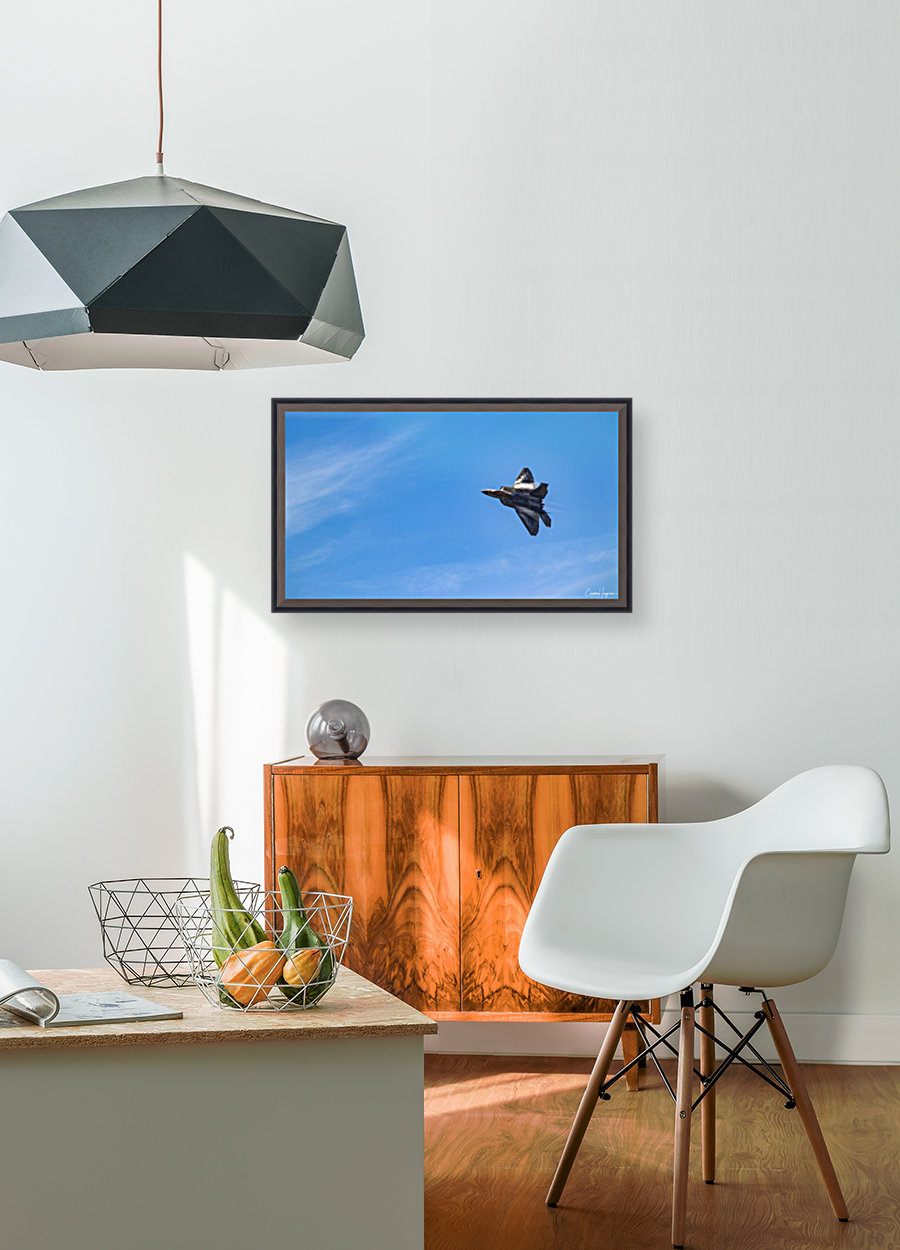F22 raptor  with Floating Frame