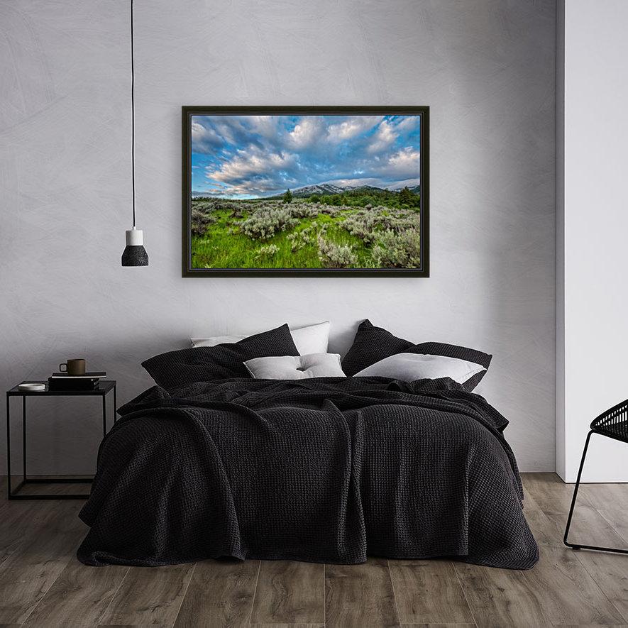 Goodenough Canyon Landscape  Art