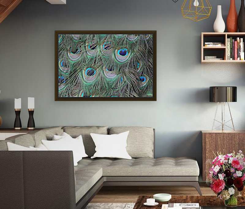 peacock feather pattern plumage  Art