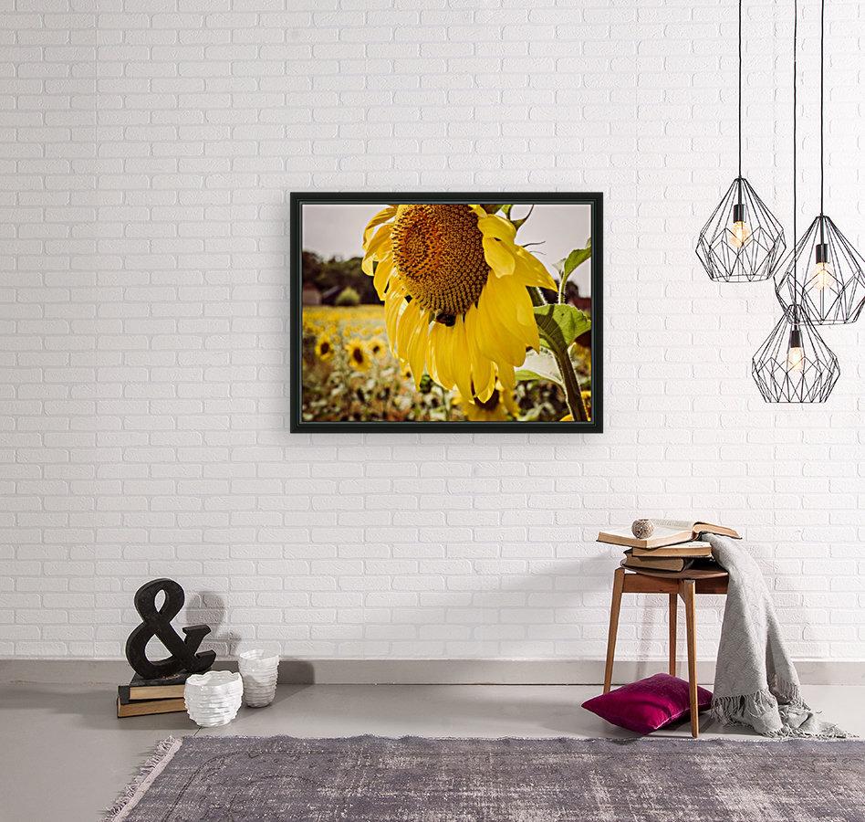 Sunflower with Bee  Art