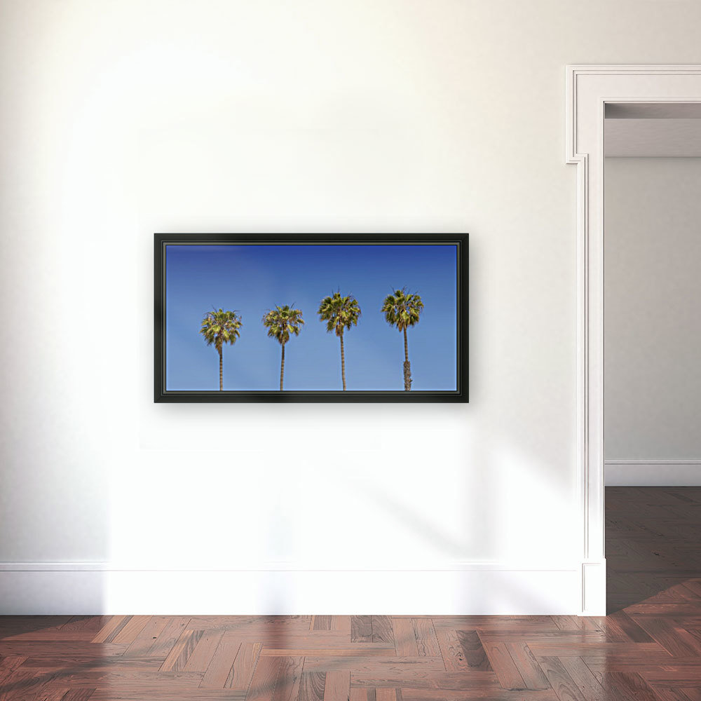 Lovely Palm Trees   Panorama  Art