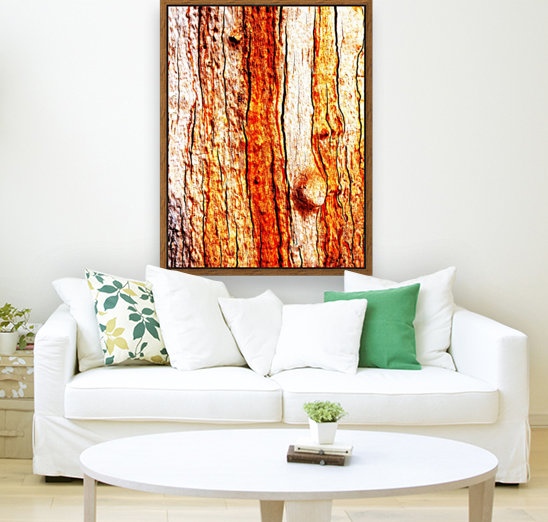 Murray Gum Tree Bark 12 with Floating Frame