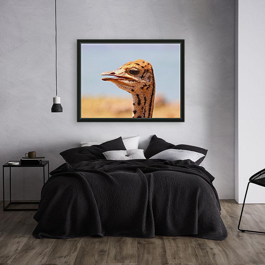 Baby Ostrich 5378  Art