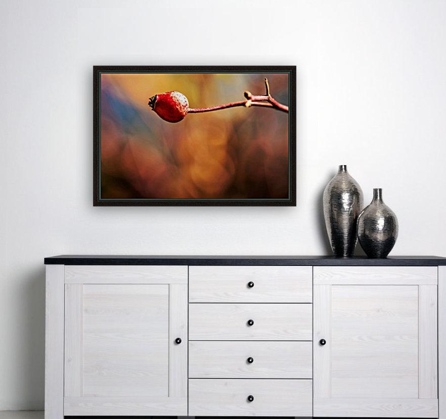 Red bud  Art
