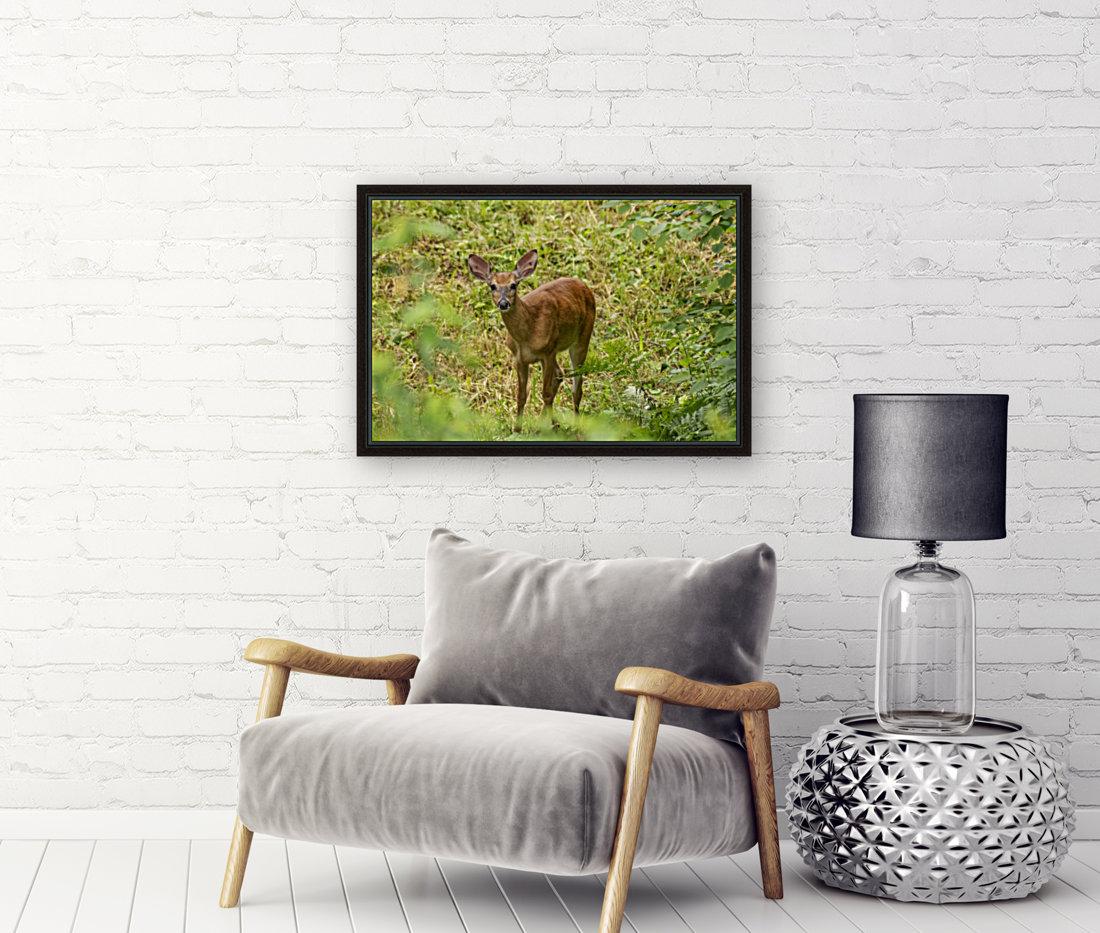 Oh Deer  Art
