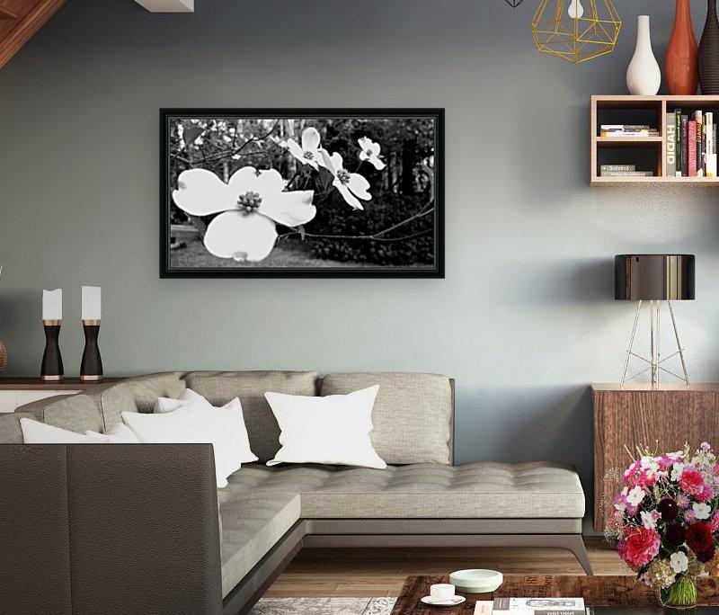 North Carolina Dogwood Flowers   Art