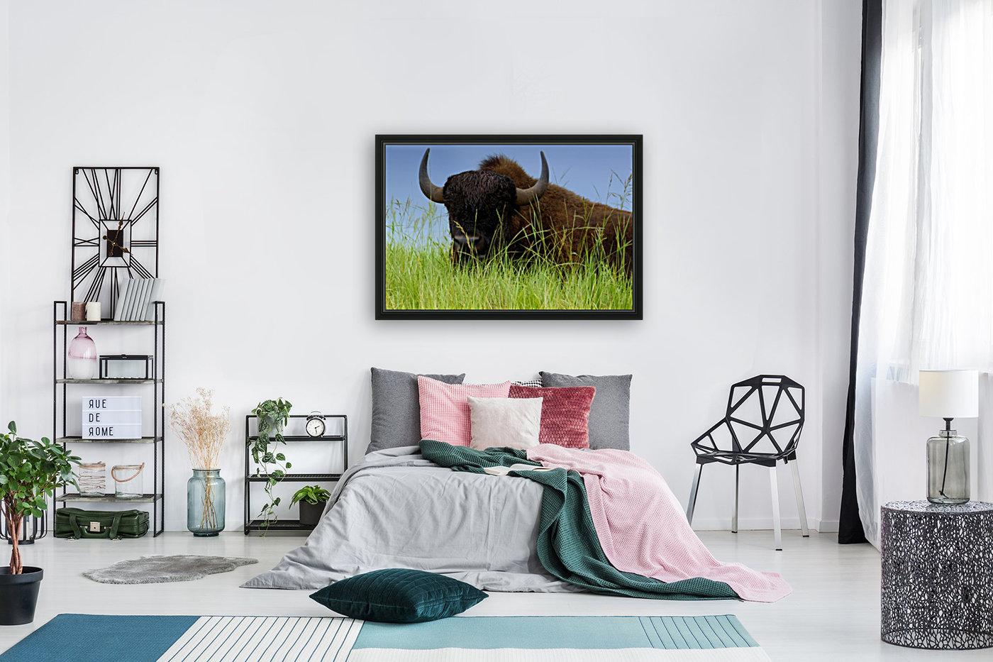 Female Bison  Art