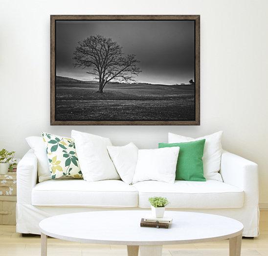 November Tree  Art