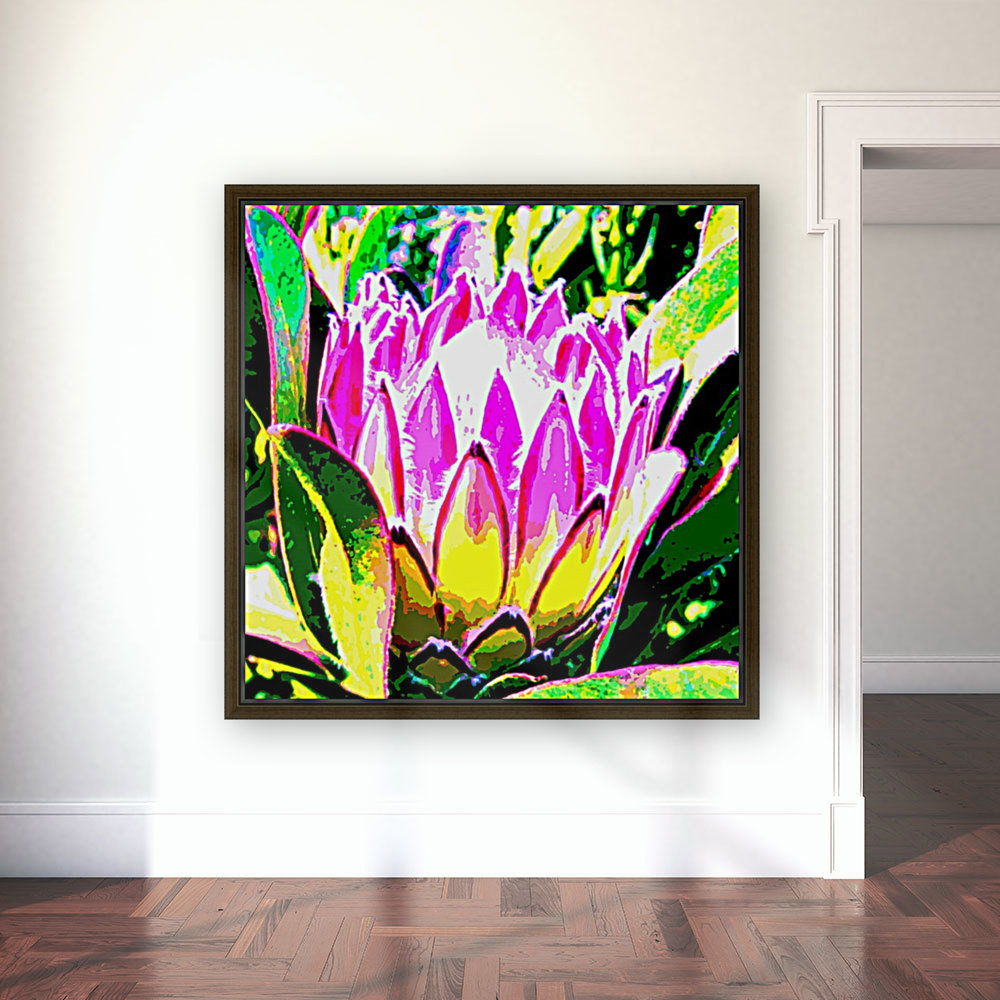 pink protea with Floating Frame