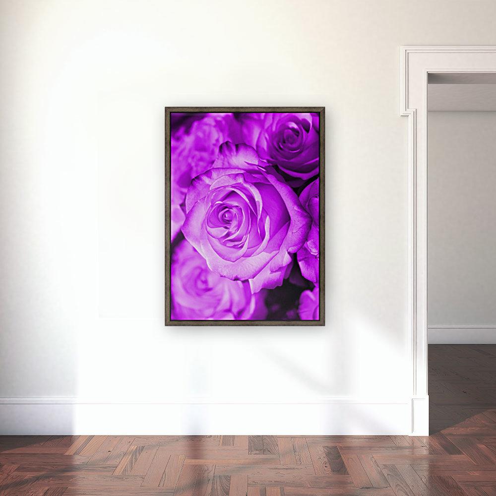 Rose purple   Art