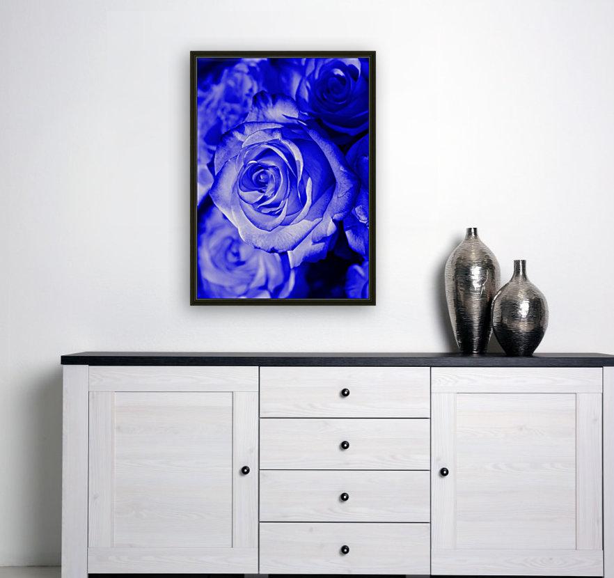 Rose blue  Art