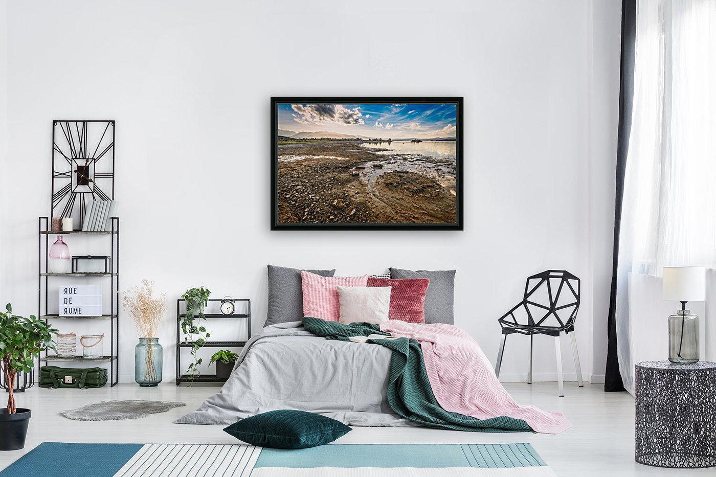 Mono Lake Shoreline  Art