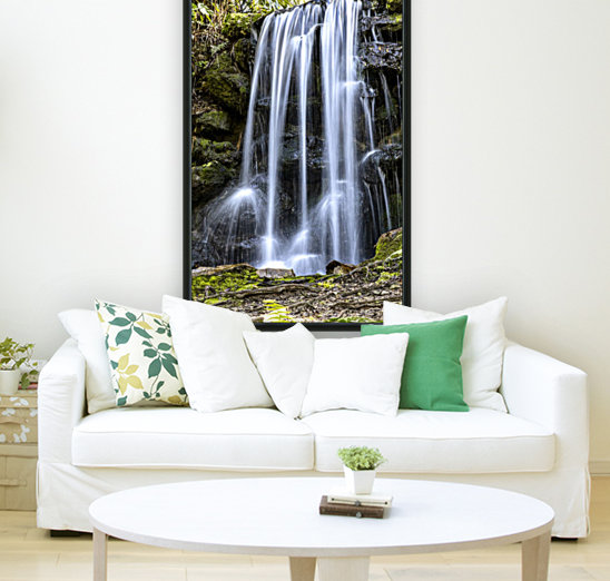Rainbow Springs Falls  Art