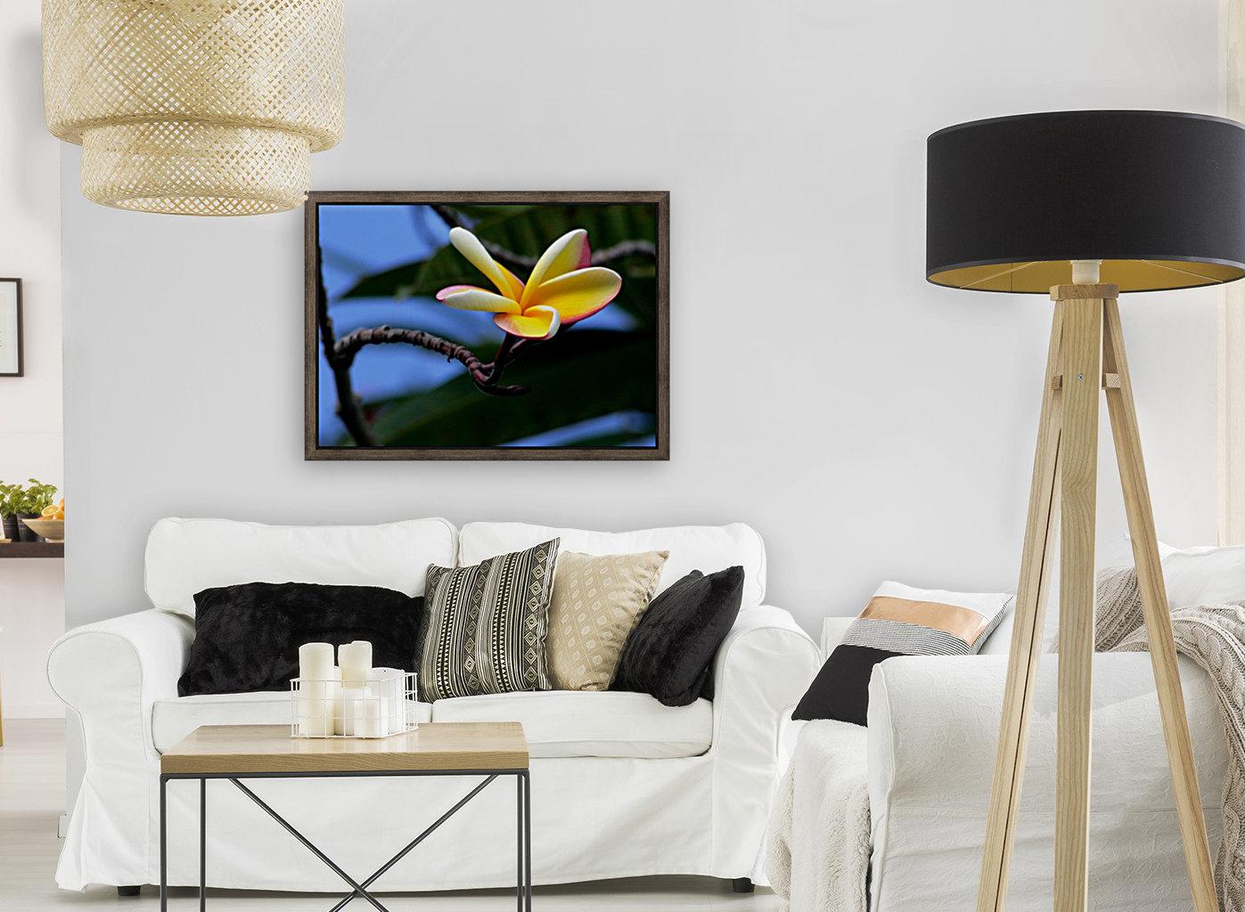 Yellow Plumeria   Art