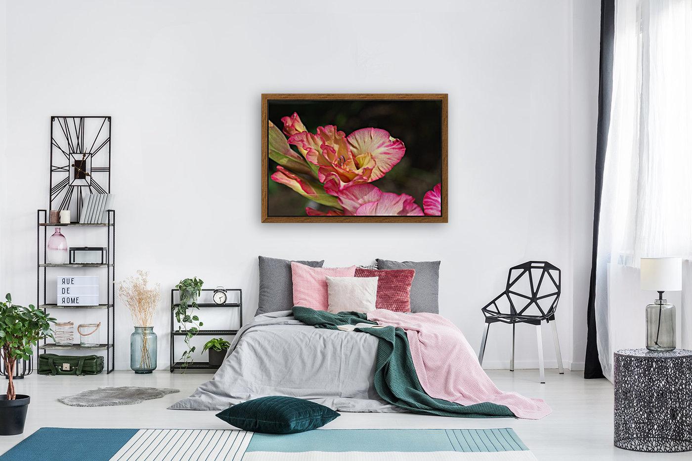 Gladiolus Display  Art