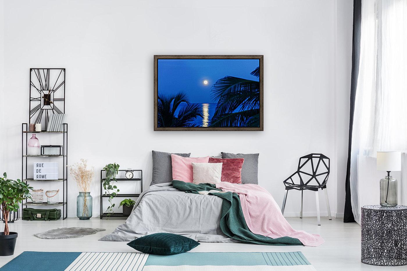 Moon rise at Cayman Kai  Art