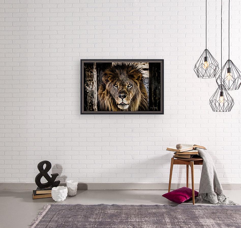 A Regal Lion  Art