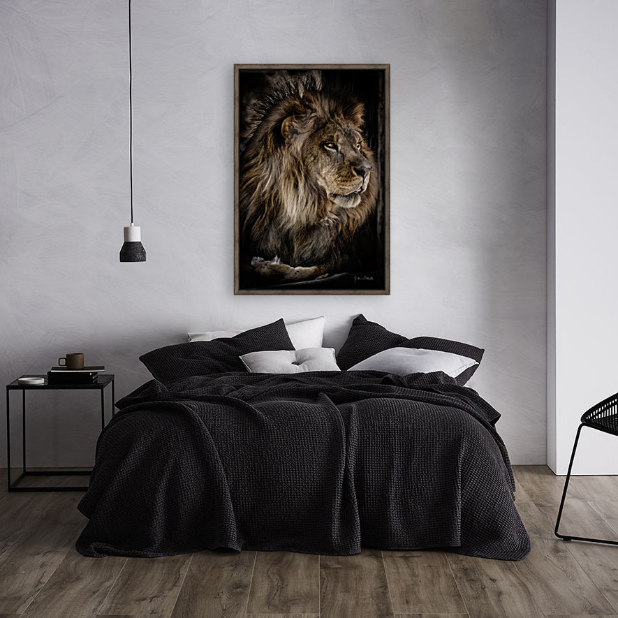 A Lions Profile  Art