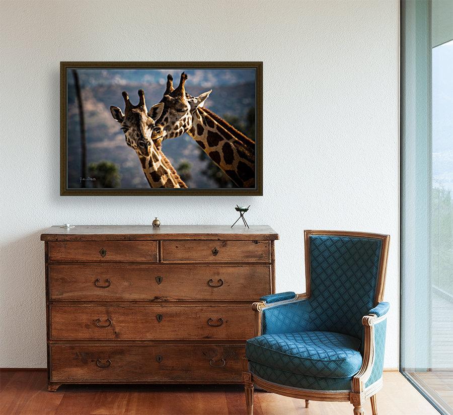 Loving Giraffes  Art