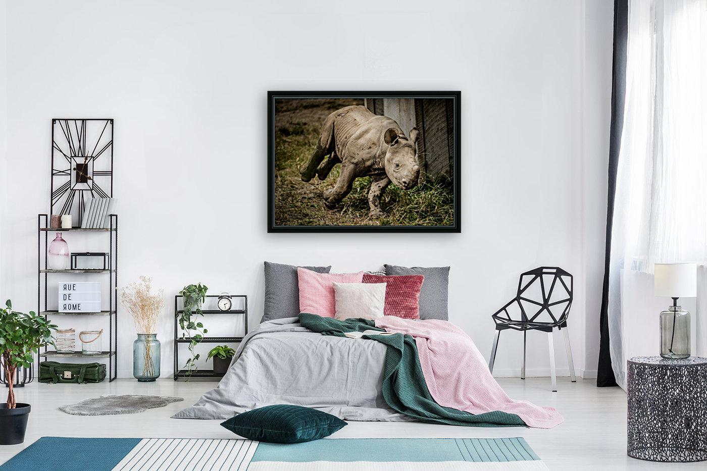 Baby Rhino  Art