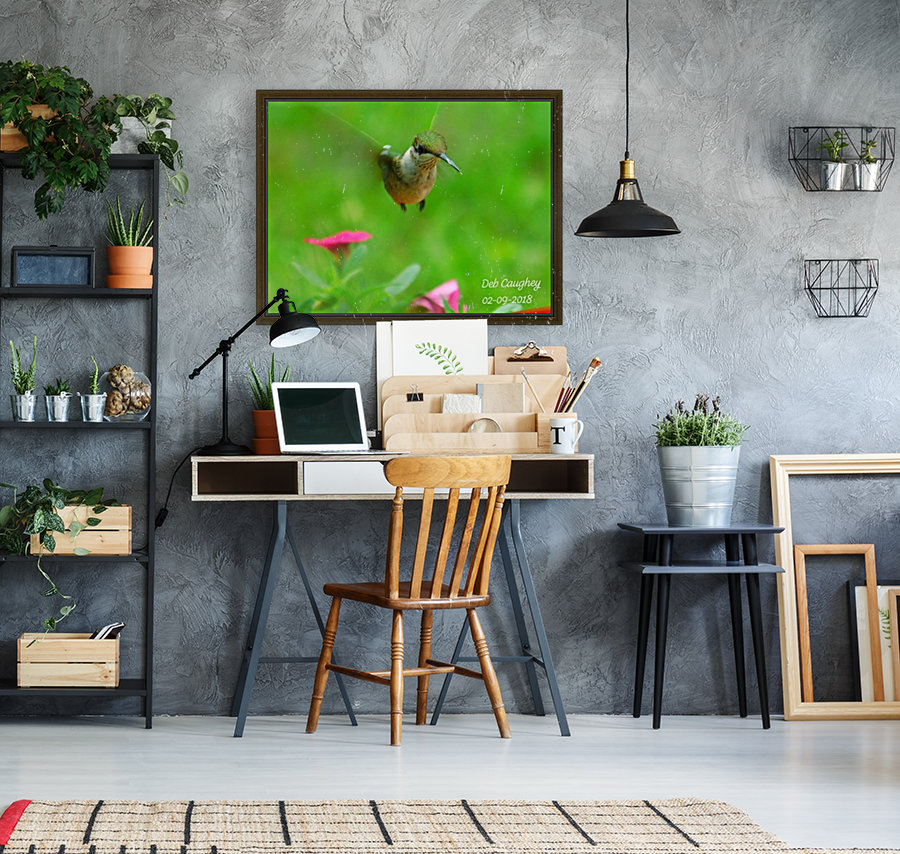 Ruby throated hummingbird with Floating Frame