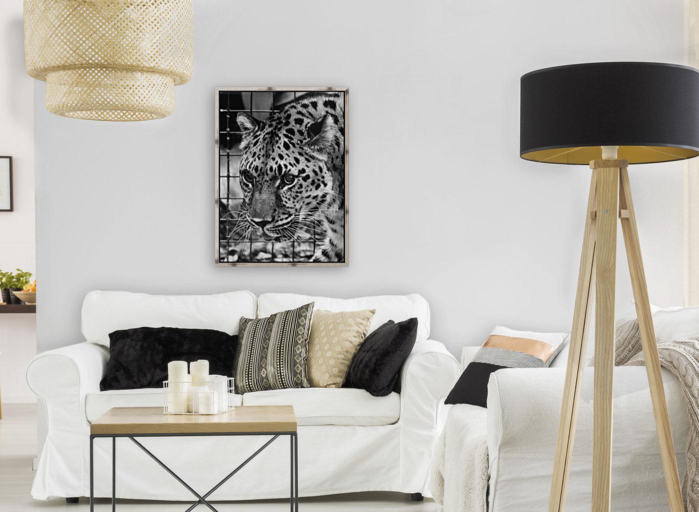 Leopard in Black & White  Art
