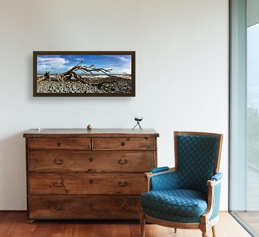 Driftwood Beach Panorama 101  Art