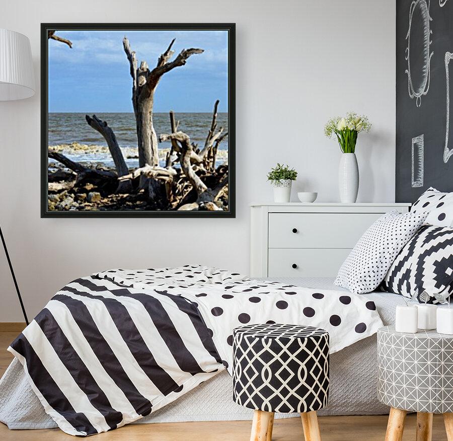 Driftwood Beach Uplifting  Art