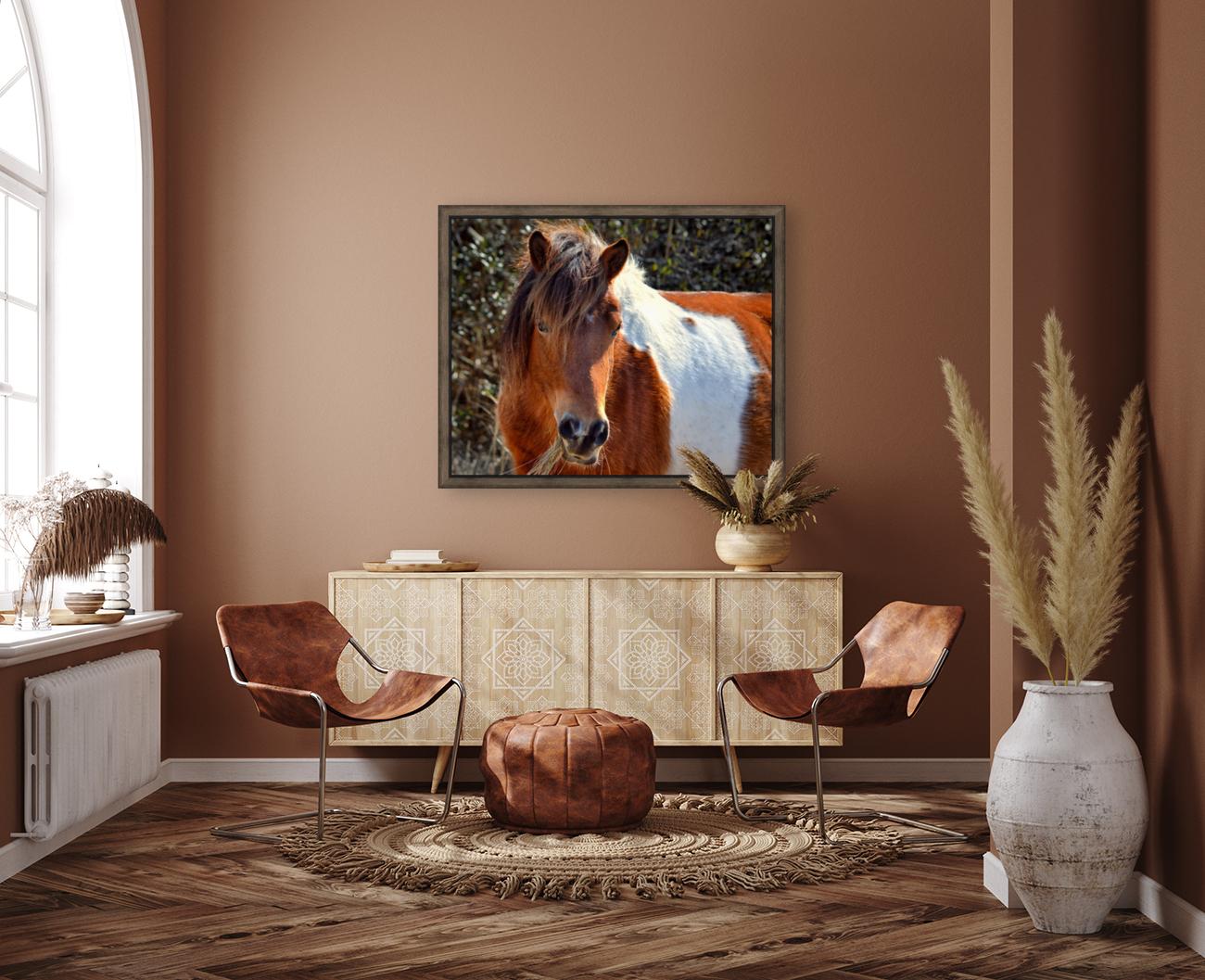 Assateague Pony Ms Macky  Art