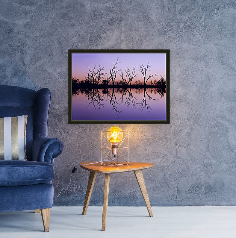 Tree Skeleton Silhouettes with Floating Frame