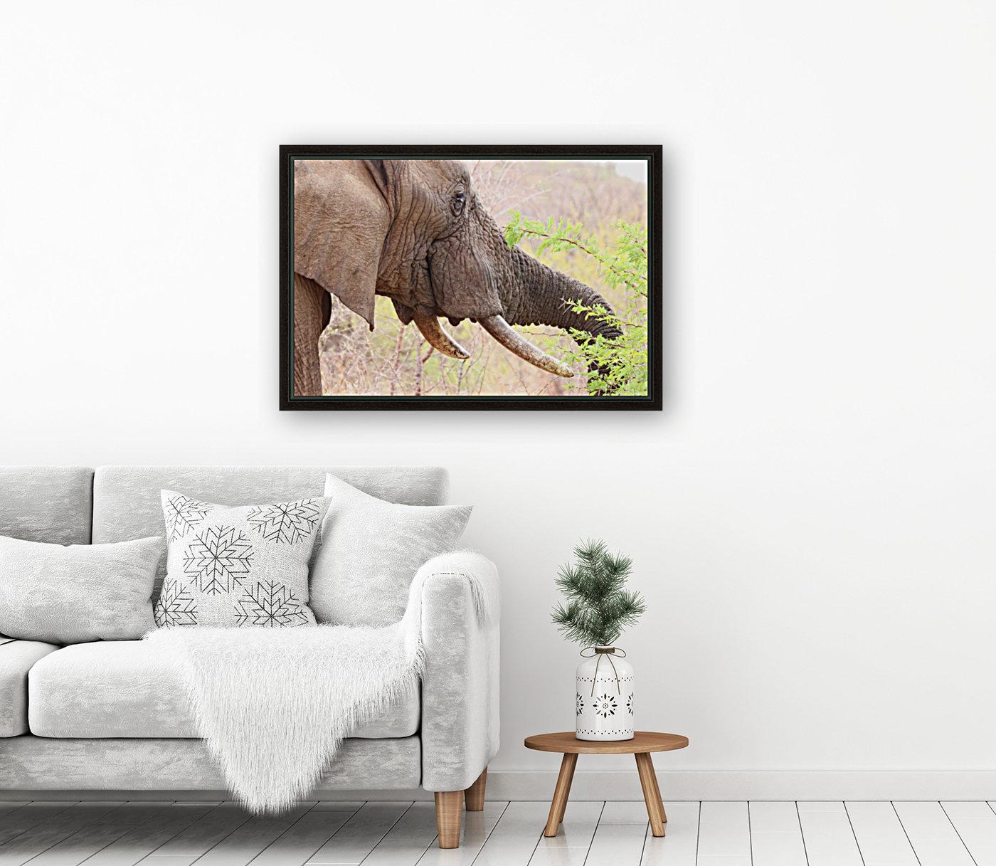 Elefant 6770  Art