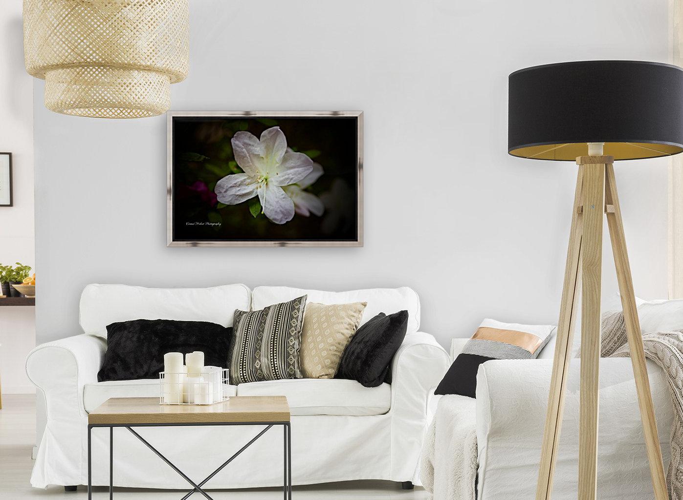 White Azalea   Art