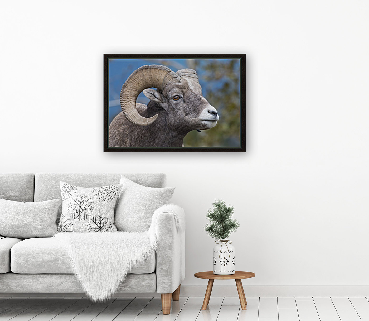 Big Horn Sheep - Portrait  Art